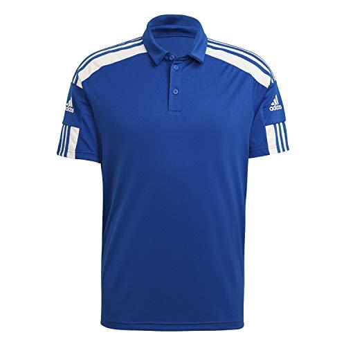 adidas Herren Sq21 Polohemd, Team Royal Blue/White, L EU