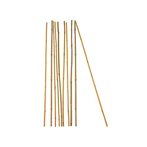 10x Pflanzstab Bambusstab 90 cm x 6 - 8 mm Bambus Rankhilfe Pflanzstab Tonkinstab 100% Naturprodukt Pflanzstäbe Bambusstäbe Bambusstangen