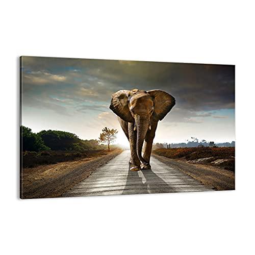 Bild auf Leinwand - Leinwandbild - Elefant Straße Landschaft - 120x80cm - Wand Bild - Wanddeko - Leinwanddruck - Bilder - Kunstdruck - Wanddekoration - Leinwand bilder - Wandkunst - AA120x80-0214