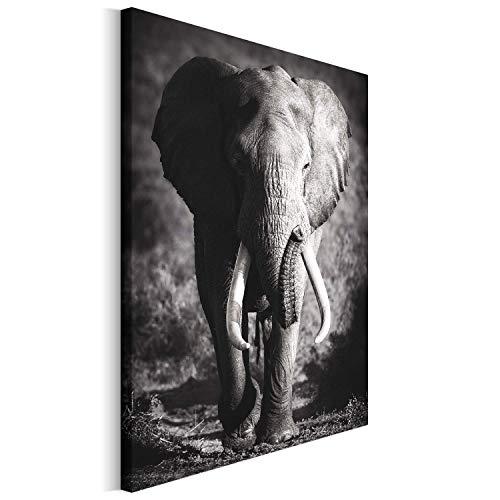 Revolio 60x80 cm Leinwandbild Wandbilder Wohnzimmer Modern Kunstdruck Design Wanddekoration Deko Bild auf Leinwand Bilder 1 Teilig - Elefant Tier schwarz-weiß grau