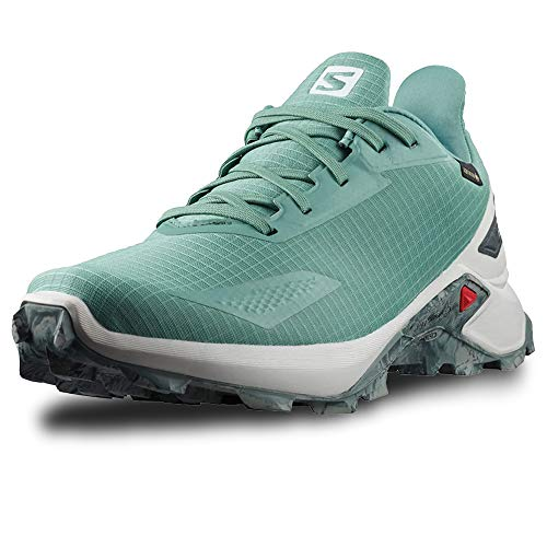 Salomon Herren Alphacross Blast GTX, Wasserdichte Trail Running Schuhe, Hellgrün (Trellis/Lunar Rock/Ebony), 42 EU