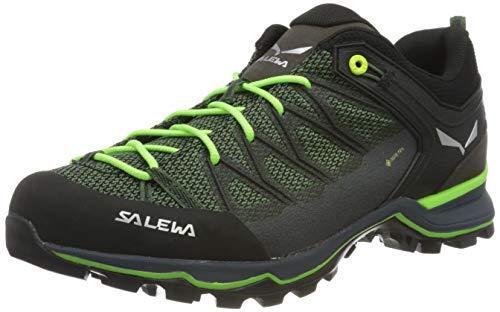 Salewa Herren MS Mountain Trainer Lite Gore-TEX Trekking- & Wanderstiefel, Myrtle/Ombre Blue, 42.5 EU