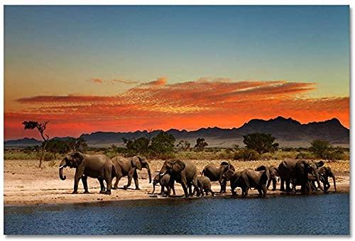 Leinwandbilder,Leinwand Malerei Afrikanischer Grasland Elefant Ölgemälde auf Leinwand Poster und Drucke Wandkunst Bilder Für Wohnzimmer 50*70cm