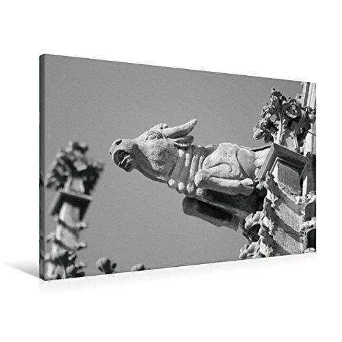 Premium Textil-Leinwand 90 x 60 cm Quer-Format Wasserspeier Stier auf dem Ulmer Münster, Leinwanddruck von Kattobello