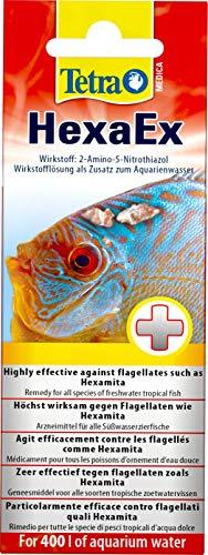 Tetra Medica HexaEx, 20 ml, hilft bei Fischkrankheiten wie z. B. Loch-Krankheit