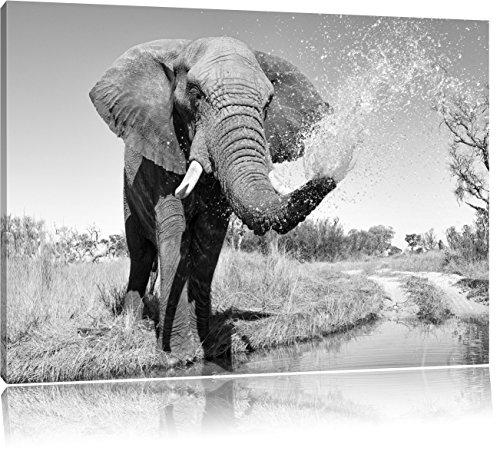 Pixxprint schöner Elefant spritzt mit Wasser Kunst B&W, Format: 120x80 auf Leinwand, XXL riesige Bilder fertig gerahmt mit Keilrahmen, Kunstdruck auf Wandbild mit Rahmen.