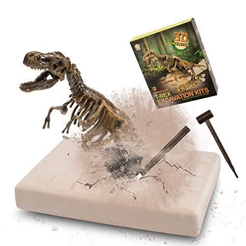 MUSCCCM Dinosaurier Spielzeug Ausgrabungsset Tyrannosaurus, Dinosaurier Dig Kit Realistische 3D-Skelett Dinosaur Modell Lernspielzeug Fossil Digging Kit Geschenk für Kinder