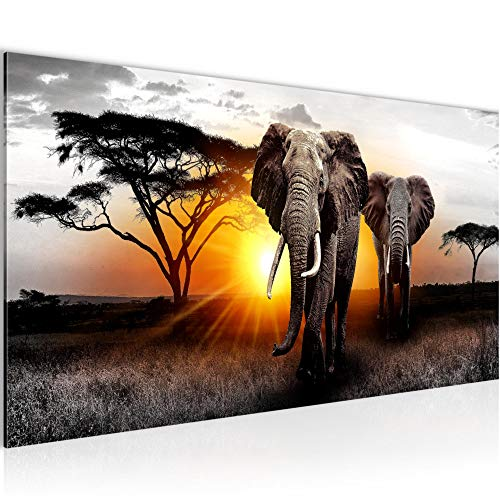 Wandbilder Afrika Elefant 1 Teilig Modern Vlies Leinwand Wohnzimmer Flur Panorama Grau Orange 007612a
