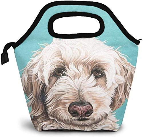 Niedliche Labradoodle isolierte Lunch-Tasche Benutzerdefinierte Bento-Box Picknick-Kühler Tragbare Handtasche Lunch-Einkaufstasche für Frauen Mädchen Männer Jungen