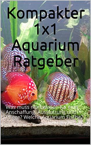 Kompakter 1x1 Aquarium Ratgeber: Was muss man wissen für eine Anschaffung, Ausstattung und Pflege? Welche Aquarium Fische?