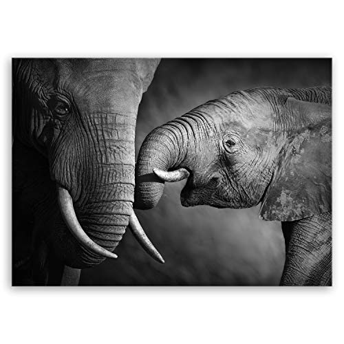 ge Bildet Bild auf Leinwand MIT Sommer RABATT Elefanten - schwarz weiß Tier Bilder - 70x50 cm einteilig - direkt vom Hersteller aus Deutschland