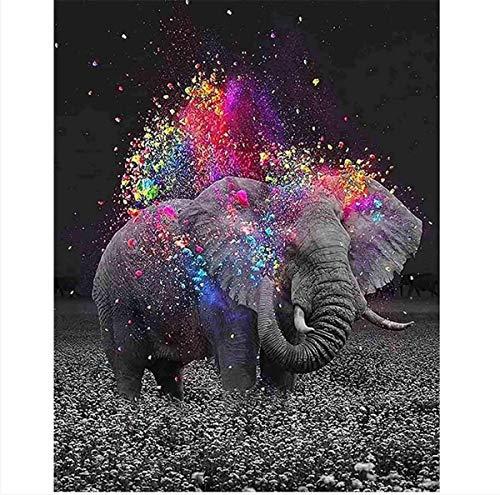 Tenwind Malen nach Zahlen Erwachsene Anfänger Kinder,DIY Handgemalt Ölgemälde Kits auf Leinwand Geschenk für Freund Weihnachten Geburtstag Ohne Rahmen, 40 * 50 cm (Elefant
